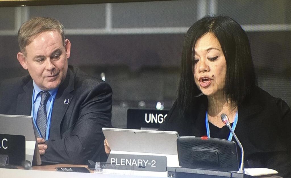 DSG Pratt at COP24 Climate Finance Session